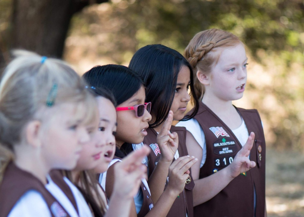 troop 3100 promise and law